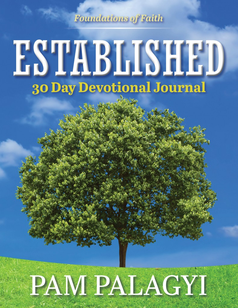 Established 30 Day Devotional Cover Revised