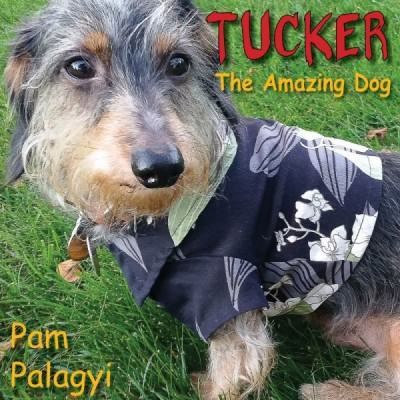 Tucker: the Amazing Dog… A Children's Picture Book