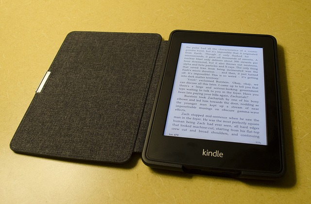 eBook Format for the Self-Publisher