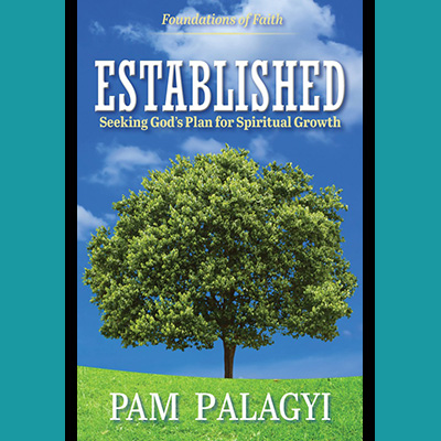 Established: Seeking God's Plan for Spiritual Growth – Kindle Edition